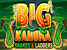 Big Kahuna Snakes And Ladders в казино: настоящий хит онлайн